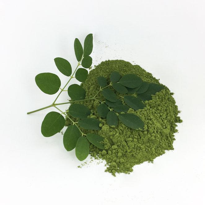 Moringa-feuille-produit
