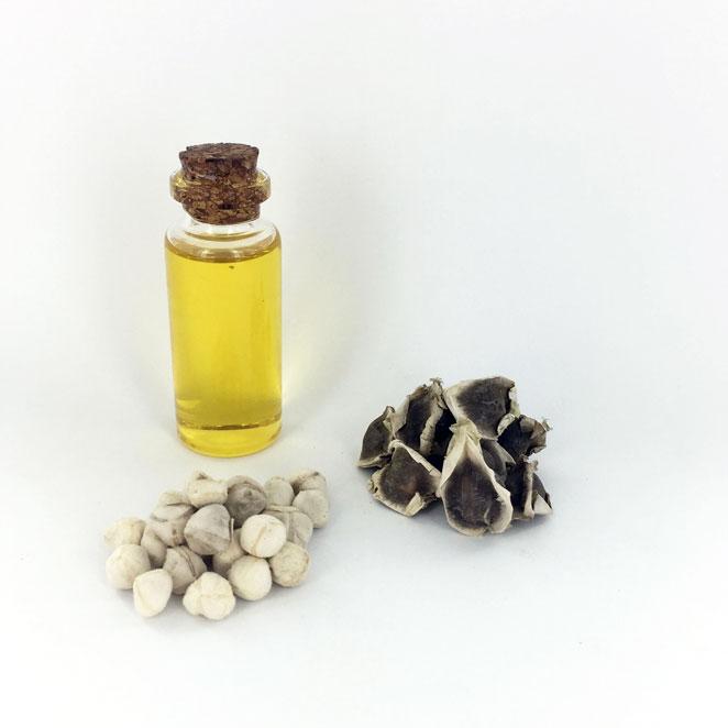 Moringa-oil-produit