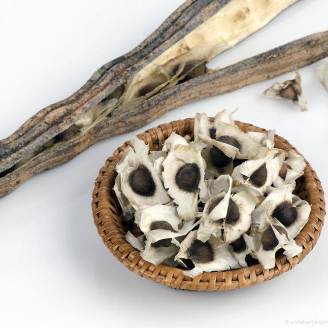 moringa-oleisera-horseradish-seeds